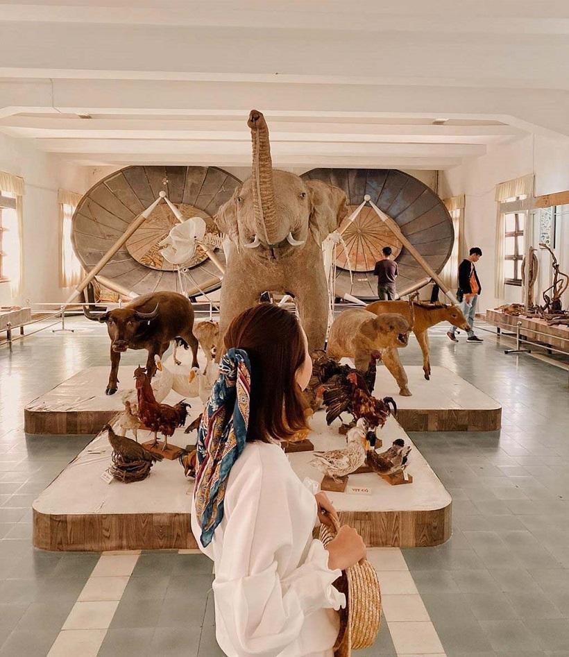 Phân viện sinh học - Bảo tàng Sô cô la, Đà Lạt