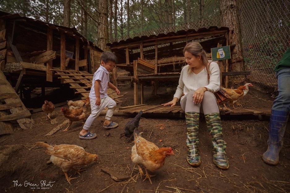 Rừng Thông Mơ Farm & Bistro Đà Lạt