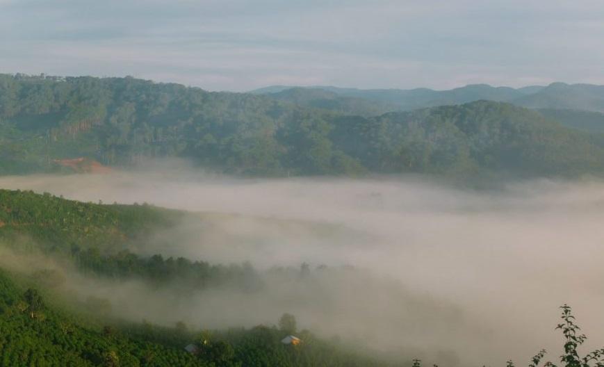 Tour săn mây cao cấp tại Đà Lạt