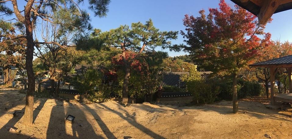 Du lịch mùa thu Hàn Quốc từ Đà Lạt bằng Korean Air