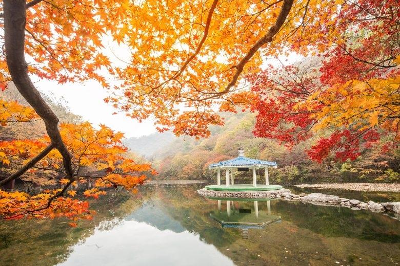 Khám phá Hàn Quốc qua một góc nhìn khác