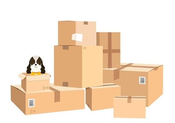 Dịch vụ vận chuyển đồ đạc và chuyển nhà tại Seoul