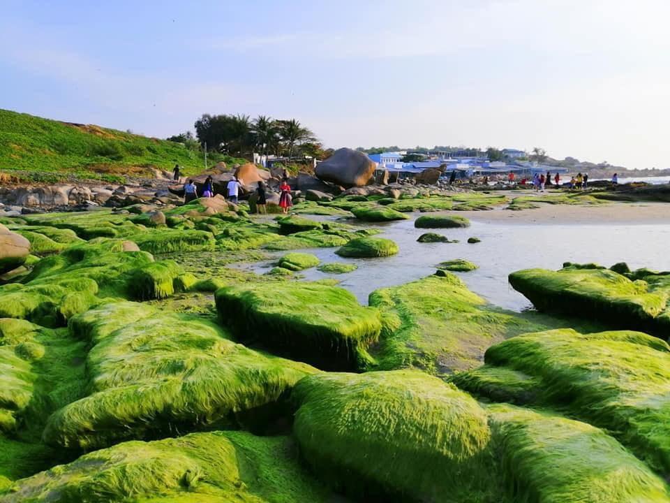 Biển Cổ Thạch, Bình Thuận