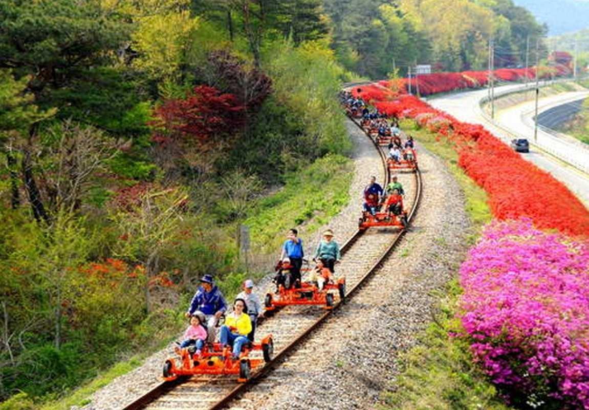 Xe đạp đường sắt Gangchon Rail Bike